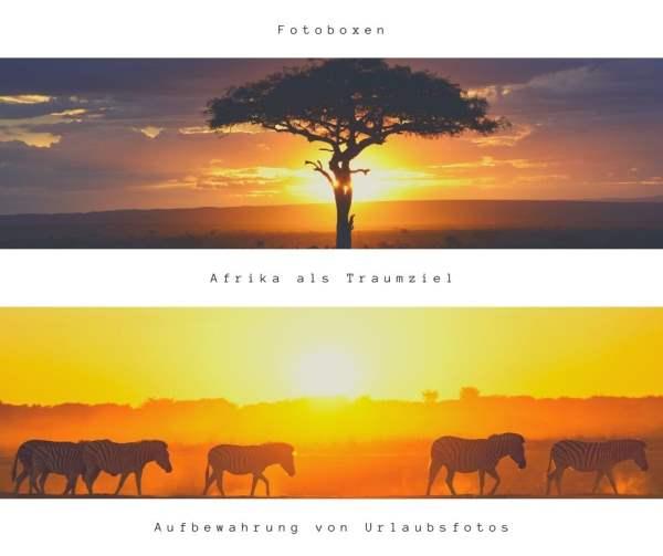Reise nach Afrika: das exotische Reiseziel